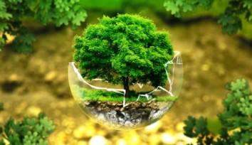 ÇED – Çevresel Etki Değerlendirmesi