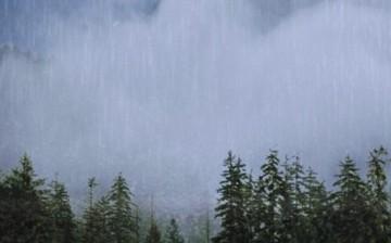 Asit Yağmurları ve Filtreleme Sistemleri
