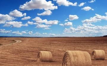 Tarım Alanları 80 Yıl İçinde Sular Altında Kalacak