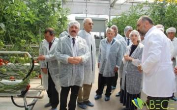Türkiye'nin Fabrika Baca Atığı İle Isıtılan İlk Modern Serası Hizmete Açıldı