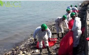 Foça'da Kıyılara Bulaşan Petrol Atığını 50 Kişilik Ekip Temizliyor