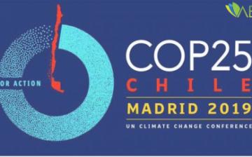 Birleşmiş Milletler İklim Değişikliği Taraflar Konferansı (COP25) İspanya'da Başladı