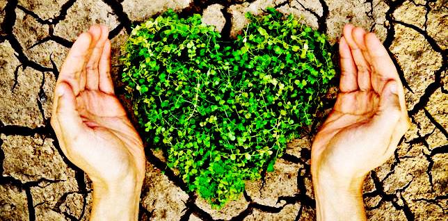 Kirli Toprak Temizlenmesi - Çevre danışmanlık, Toprak Kirliliği, ÇED