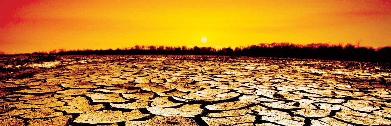 Toprak Kirliliği Tespiti